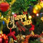 Bí kíp tổ chức tiệc Giáng sinh hoàn hảo mà bạn nên biết